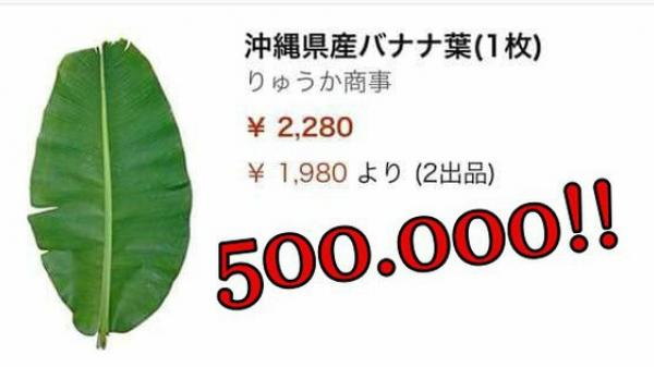 Lá chuối tươi đăng bán trên Amazon gần 500 nghìn 1 lá, mua 5 lá giảm giá còn 1 triệu 2