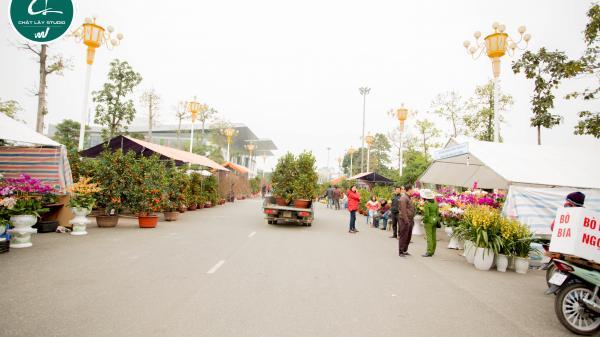 Vĩnh Phúc rộn ràng xuân mới tại chợ hoa Tết