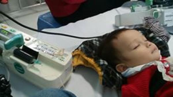 Thắt lòng gia đình nghèo ở Vĩnh Phúc không đủ tiền chữa bệnh cho con trai hơn 1 tuổi