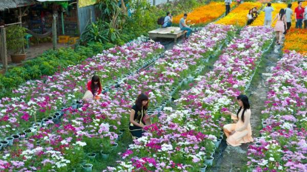 Top 6 địa danh du lịch vui, thú vị ở Vĩnh Phúc