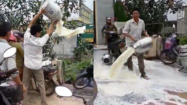 Người nông dân uất ức đổ sữa lênh láng trước cửa hàng thu mua vì bị ép giá rẻ mạt