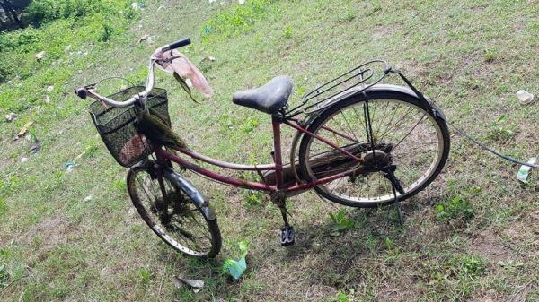 Nam Định: Phát hiện thi thể người phụ nữ t.ử v.o.ng bên chiếc xe đạp trên rừng thông