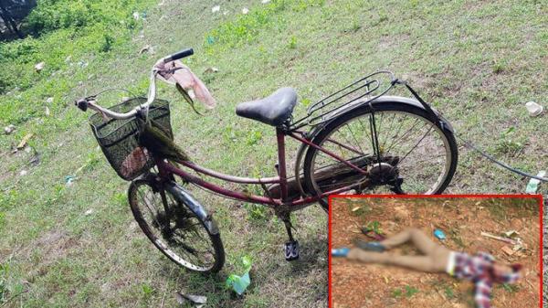 Nóng: Tá hỏa phát hiện thi thể người phụ nữ t.ử v.o.ng bên chiếc xe đạp trên rừng thông