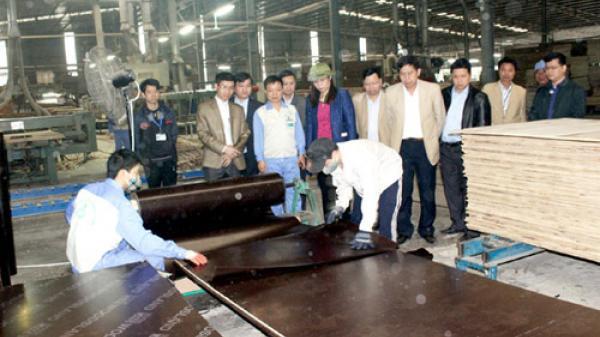 Thu hút đầu tư vào các khu công nghiệp Hà Giang có nhiều khởi sắc