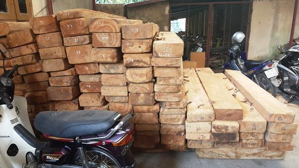 Vĩnh Phúc: Tịch thu phương tiện vận chuyển và 121 tấm gỗ Pơ mu không có nguồn gốc