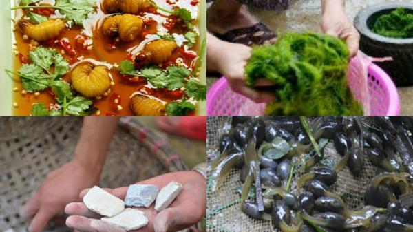 """Những món ăn không thể """"dị"""" hơn chỉ những người sinh ra từ làng mới biết"""