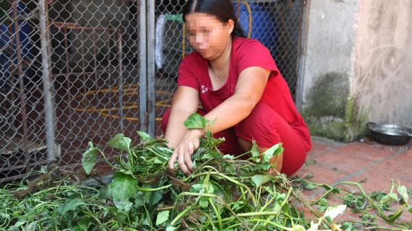 Tâm sự cay đắng của người phụ nữ Vĩnh Phúc bị lừa bán sang Trung Quốc sau 19 năm trở về quê hương