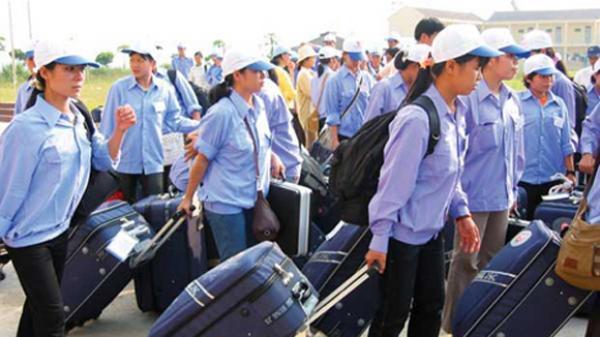 Vĩnh Phúc: Vận động 13 lao động cư trú bất hợp pháp tại Hàn Quốc về nước