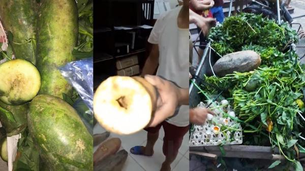 """Thực phẩm bẩn """"tuồn"""" vào trường tiểu học tại Vĩnh Phúc: Công khai xin lỗi phụ huynh học sinh"""
