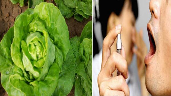 4 loại rau thần dược có tác dụng trị hôi miệng cực kỳ hiệu quả