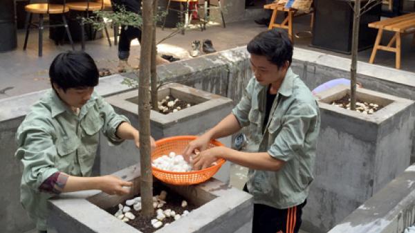 Bà Rịa - Vũng Tàu: Dịch vụ vệ sinh nhà cửa vào mùa làm ăn
