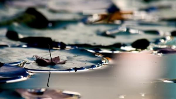 Trong cuộc đời này! Đừng như cốc nước nhỏ, hãy là mặt hồ lớn