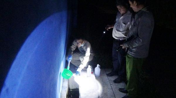 Phát hiện cơ sở giết mổ xả thải ra môi trường tại Long An