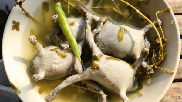 Ếch còn nguyên con - món ăn khiến nhiều người khiếp vía khi vừa nhìn thấy này lại là đặc sản ở Ninh Thuận và cả Thái Lan