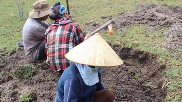 Phú Yên: 'Xẻ thịt' lòng hồ thủy điện để đào đá đen