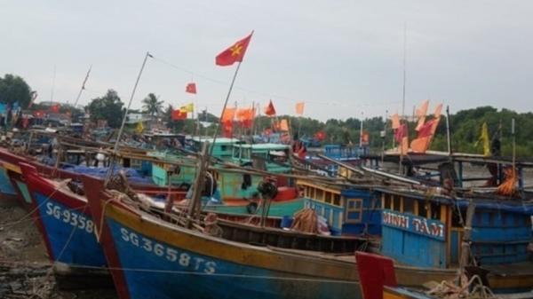 """Áp thấp """"đe doạ"""", TPHCM sẵn sàng di dời dân, cấm tàu thuyền"""