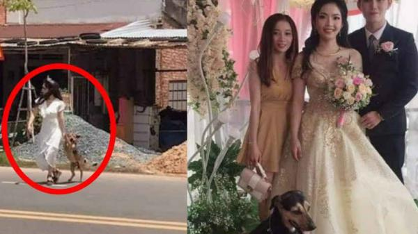 Cô dâu vội vã chạy sang đường, để lôi cún cứng về nhà chụp cùng trong đám cưới