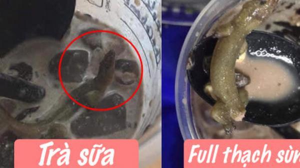 Uống gần hết ly trà sữa phát hiện có con thằn lằn đứt đuôi, cô gái miêu tả vị khiến người xem sốc nặng: Thum thủm beo béo?