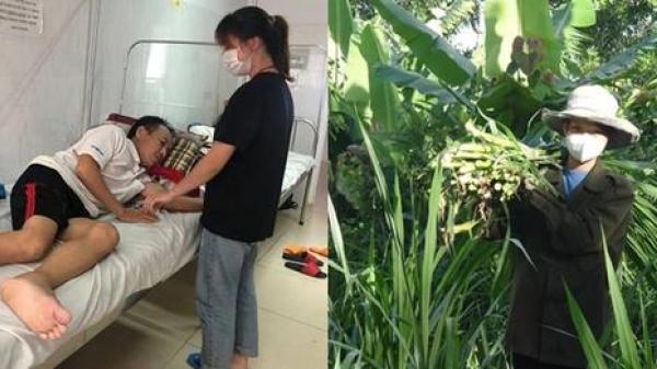 Hai chị em gái hiếu thảo gác lại ước mơ đại học kiếm tiền chữa bệnh cho cha