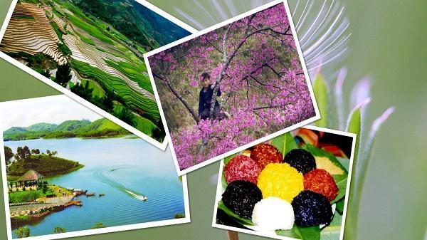 4 địa điểm du xuân cực thú vị khi ghé thăm mảnh đất Yên Bái