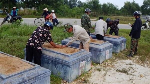 [NÓNG]: 21 ngôi mộ dòng họ bị đào phá trong đêm