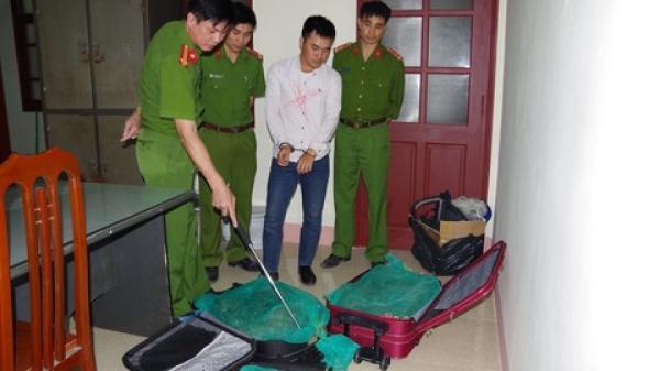 [NÓNG]: Ba vali kéo đầy rắn hổ mang vận chuyển từ Nam ra Bắc