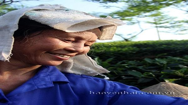Yên Bái: Mẹ tôi là nông dân