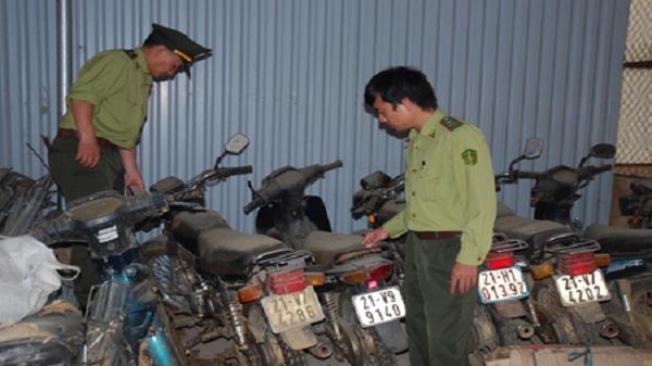 Yên Bái: Xử lý 132 vụ vi phạm lâm luật