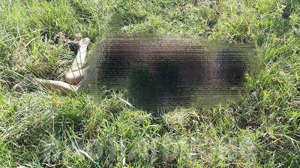 Hải Dương: Phát hiện x.ác người đàn ông k.hỏa t.hân trên bãi cỏ