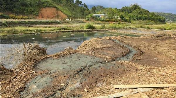 Điện Biên: Tái diễn tình trạng ô nhiễm môi trường do chế biến cà phê và dong riềng