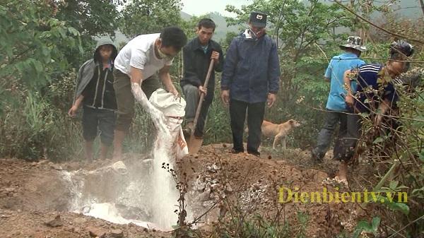 Điện Biên: Chăn nuôi bị ảnh hưởng lớn do dịch tả lợn Châu Phi