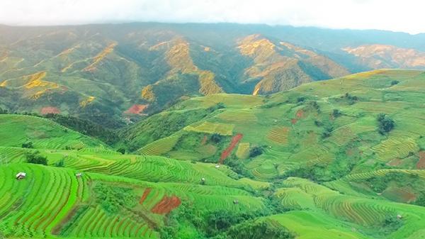 Không tin nổi vẻ đẹp mờ ảo trên ruộng bậc thang của người Mông ở Mù Cang Chải