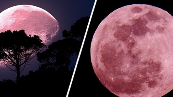 Đêm nay 7/4: Siêu trăng lớn nhất năm 2020 sẽ xuất hiện