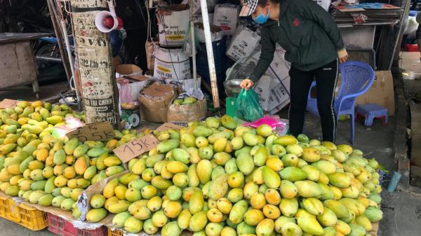 Xoài đổ đống bán đầy đường phố Sài Gòn, giá chỉ 10.000 đồng/kg