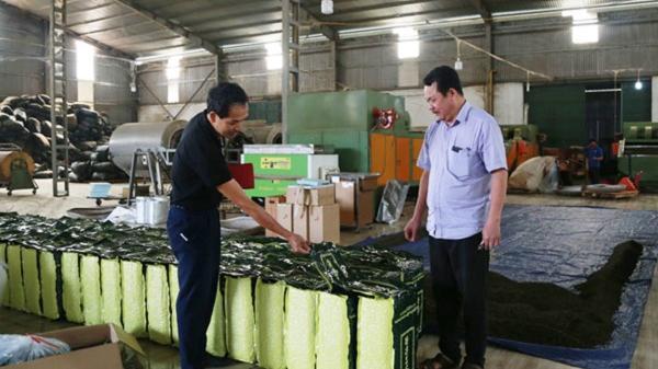 Lào Cai: Tồn kho khoảng 55 tấn chè khô chưa xuất khẩu được