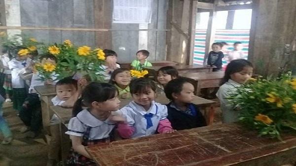 Quà 20/11 : Học sinh Yên Bái tặng hoa dã quỳ, cô giáo xúc động rơi nước mắt