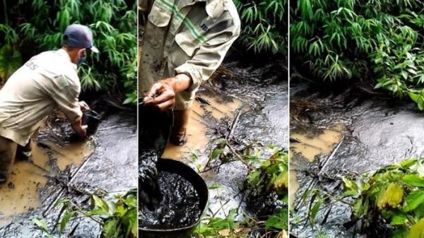 Nữ giám đốc thuê 3 người đổ dầu thải làm bẩn nước sạch sông Đà là ai?
