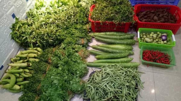 Người phụ nữ quê Hà Nam hái ra tiền nhờ bán thịt quê, rau sạch