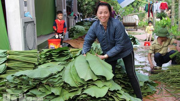 Hà Nam: Thu nhập của người dân nông thôn tăng mạnh