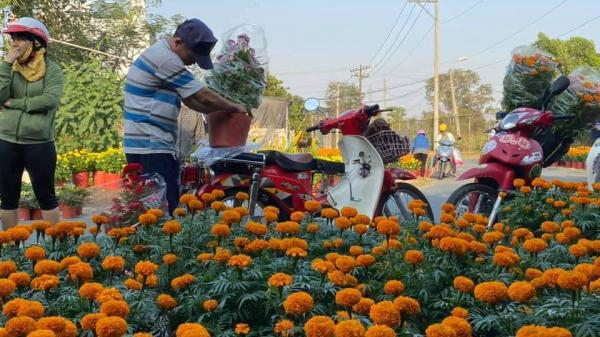 Thương tâm: Đi lấy hoa về bán Tết, vợ gục ngã mãi mãi trên tay chồng