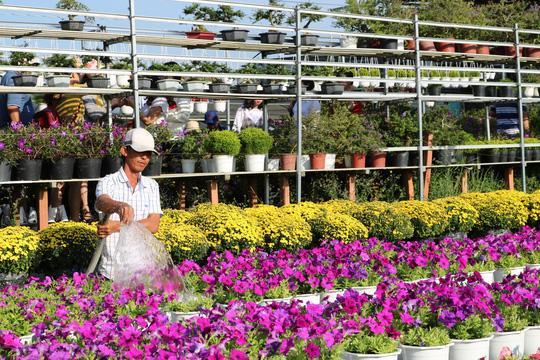 Nhà vườn chú trọng đầu tư nhiều loại hoa, kiểng mới để kinh doanh kết hợp với làm du lịch