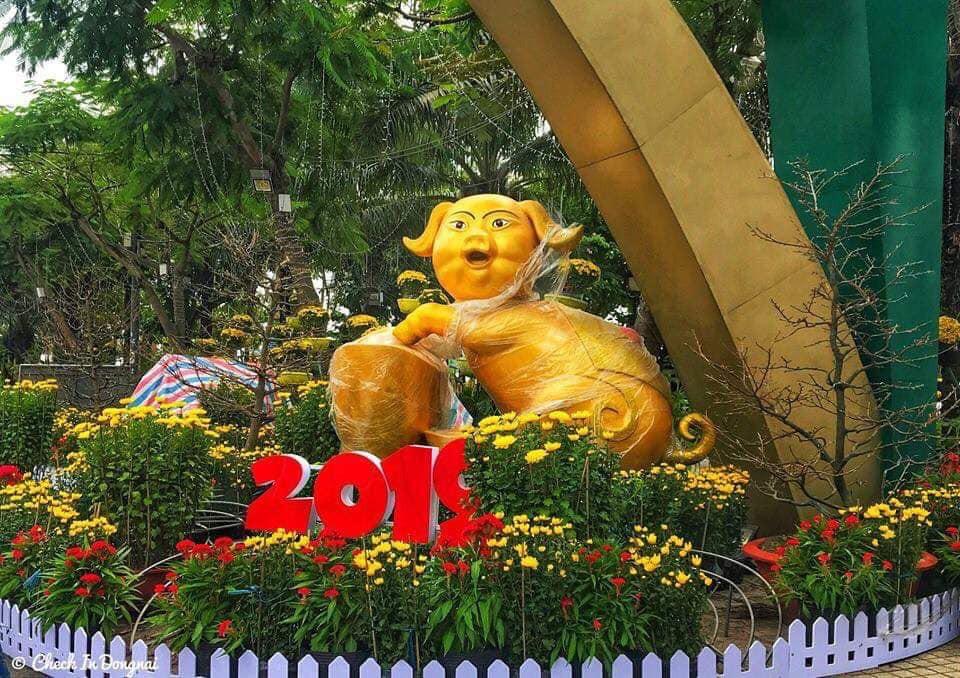 Heo hớn hở đến từ Biên Hòa, Đồng Nai: