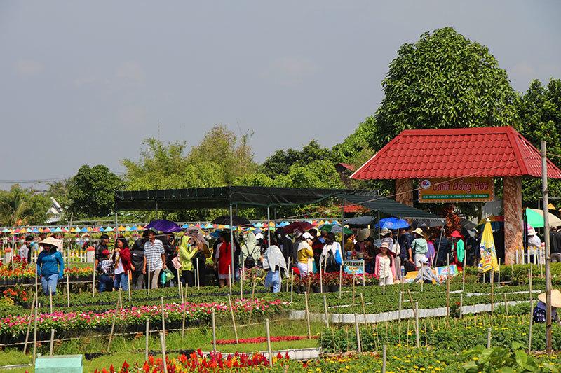 Những ngày cuối năm có hàng nghìn người đến với làng hoa Sa Đéc mỗi ngày