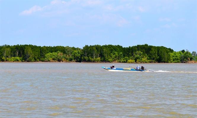 Rừng phòng hộ Vàm Xẻo Nhàu ở huyện An Minh – Kiên Giang đang bị xói lở thành từng mảng ăn sâu vào trong đê biển