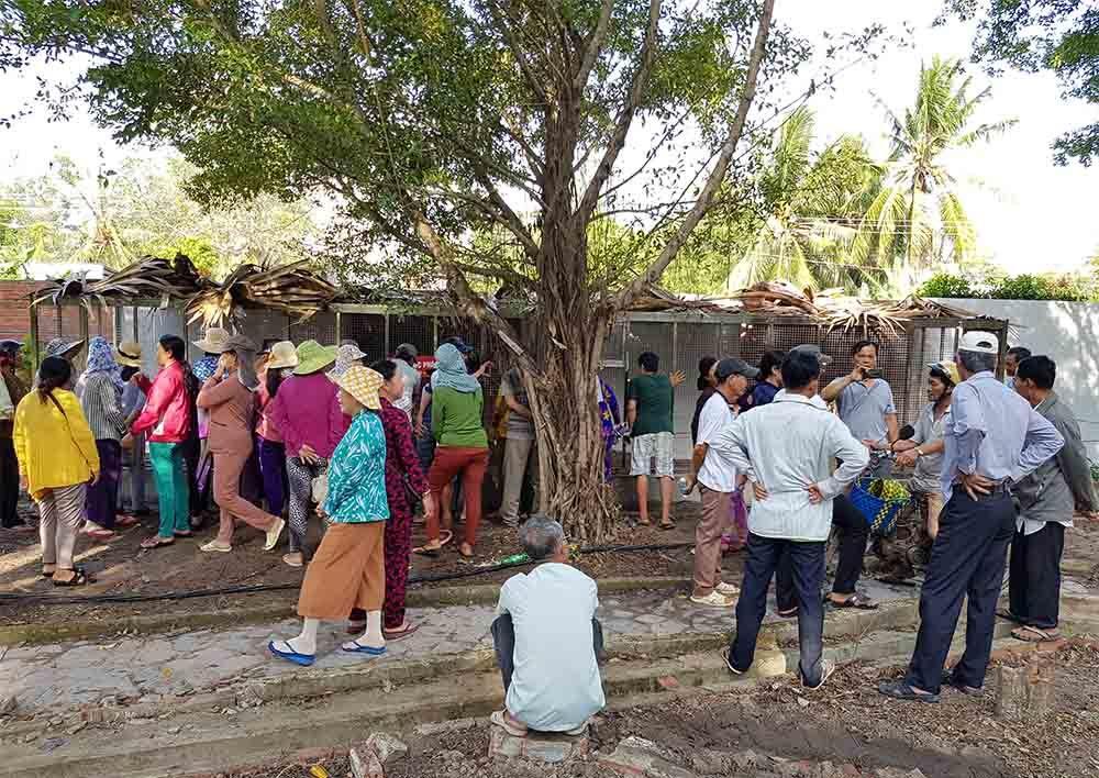Rất nhiều người kéo về khu du lịch ở Tri Tôn mua vé vào xem hai con rắn hổ