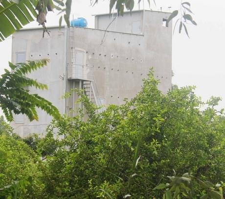 Nhà nuôi yến ở phường Cái Vồn (TX Bình Minh, tỉnh Vĩnh Long).