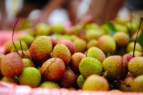 Vải chua đầu mùa đang có mức giá 100.000 đồng/kg tại thị trường Hà Nội