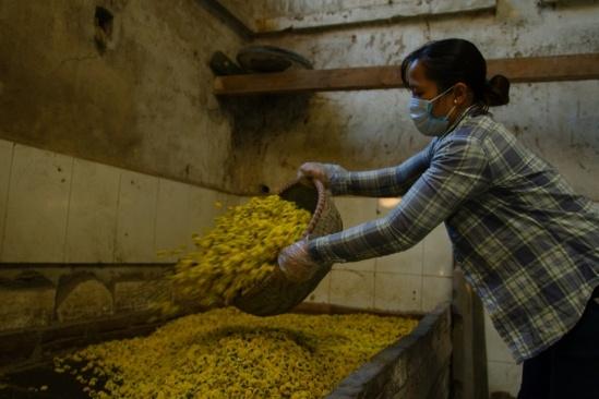 Hoa sấy khô dùng làm trà hoặc, hoa hấp diêm sinh làm thuốc bán cho các tiệm thuốc hoặc xuất khẩu sang Trung Quốc. Giá hoa sấy sạch khoảng 300.000đ/kg, trong khi giá hấp diêm sinh khoảng 230.000đ/kg.