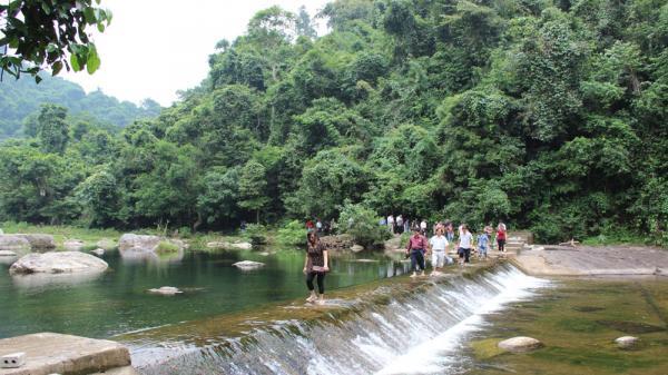 3- Rừng nguyên sinh Khe Rỗ, xã An Lạc (Sơn Động). Là khu rừng nguyên sinh tiêu biểu của vùng Đông Bắc Việt Nam. Nơi đây có hệ động thực vật rất phong phú, thích hợp đối với những du khách thích khám phá, nghiên cứu.