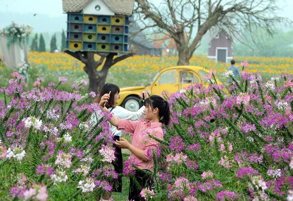 Nhiều bạn trẻ thỏa sức lưu lại hình ảnh của mình trong vườn Xuân.